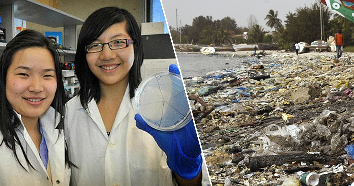 scientists/plastic waste