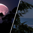Last Full 'Strawberry' Moon Before Summer Solstice Visible Tonight
