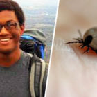 Teen Dies Of Heart Infection From Tick Bite He Didn't Know He Had