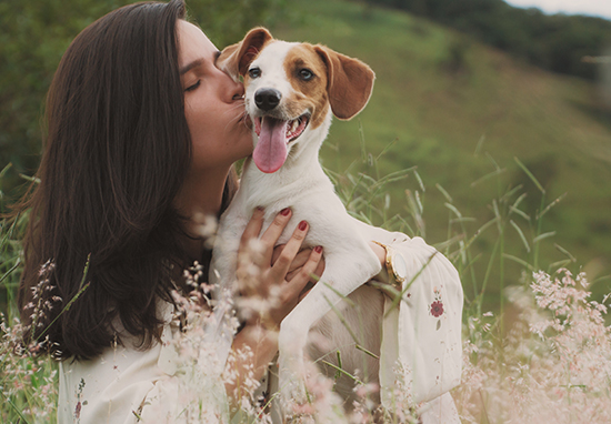 Person kissing dog