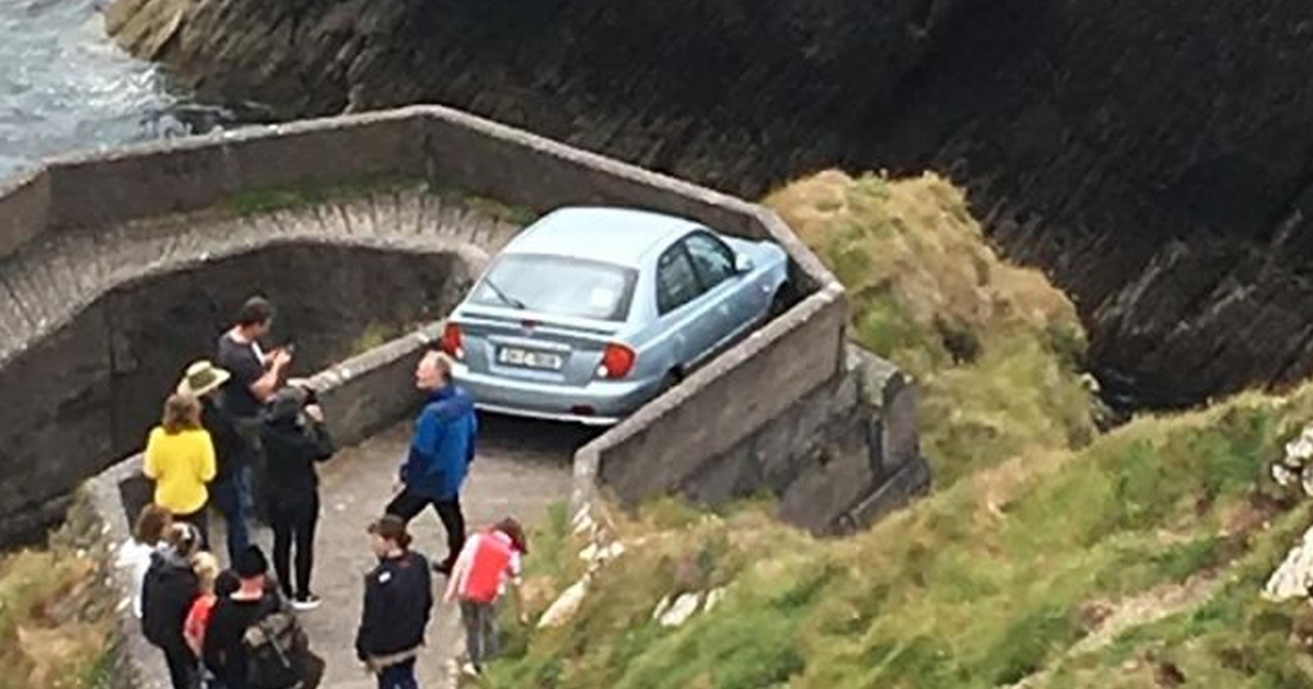 Learner Driver Gets Stuck On Sheep Highway