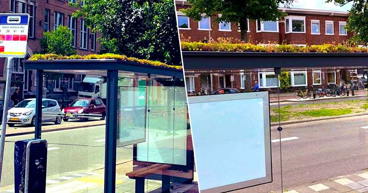 Bus stops turned into bee stops