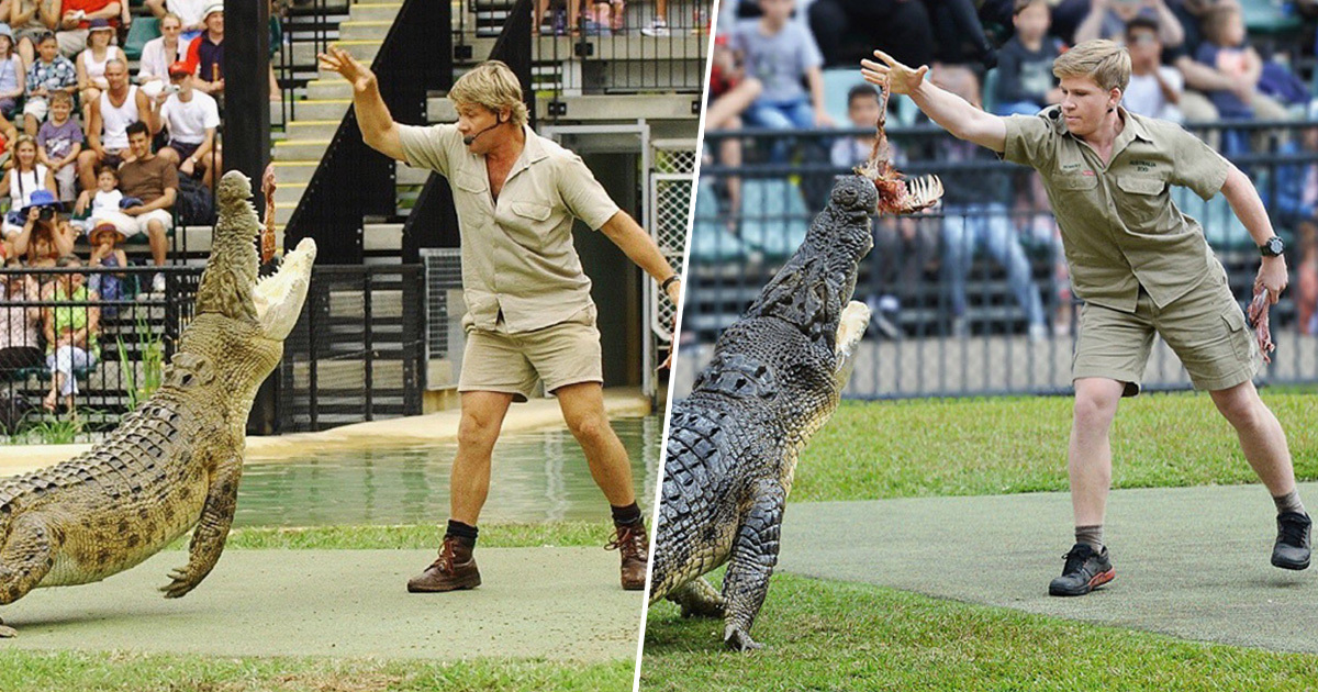 Steve Irwin And His Son Robert Fed The Same Crocodile At The Same Place 15 Years Apart