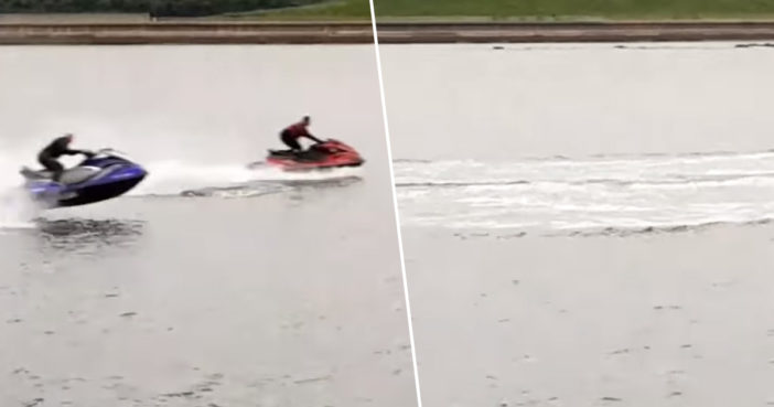 Jet-Skiers Filmed Harassing Dolphins Prompt Public Warning From Police