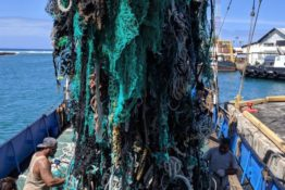 Environmentalists clear 40 tons of plastic from ocean