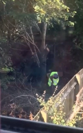 Amazon Apologises After Driver Caught Pooing In Shopper's Garden