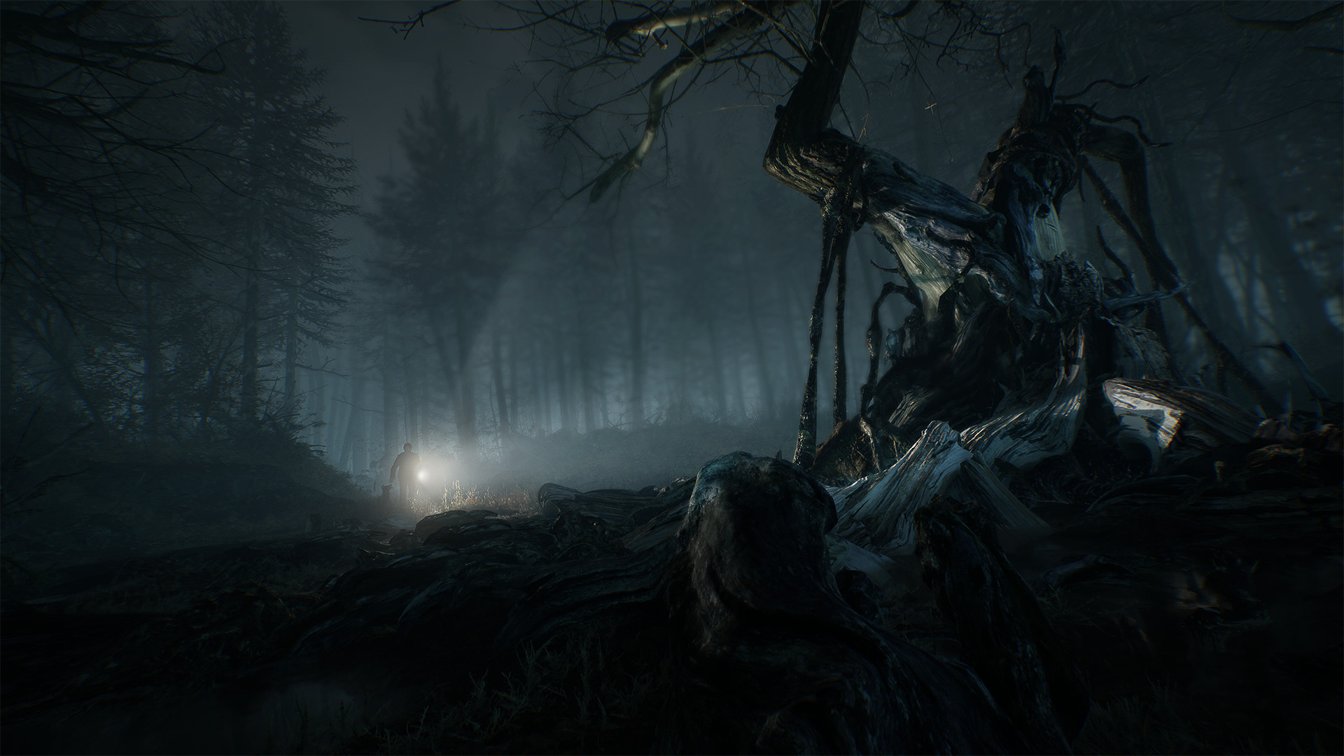 Blair Witch Looks Terrifying In New Gameplay Footage, But You Can Pet The Dog