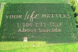 Suicide prevention maze