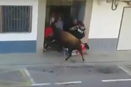 Another Man Gored To Death By Bull During Event In Spanish Town