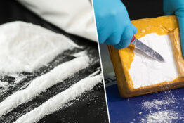 Mexican Court Approves Recreational Cocaine Use