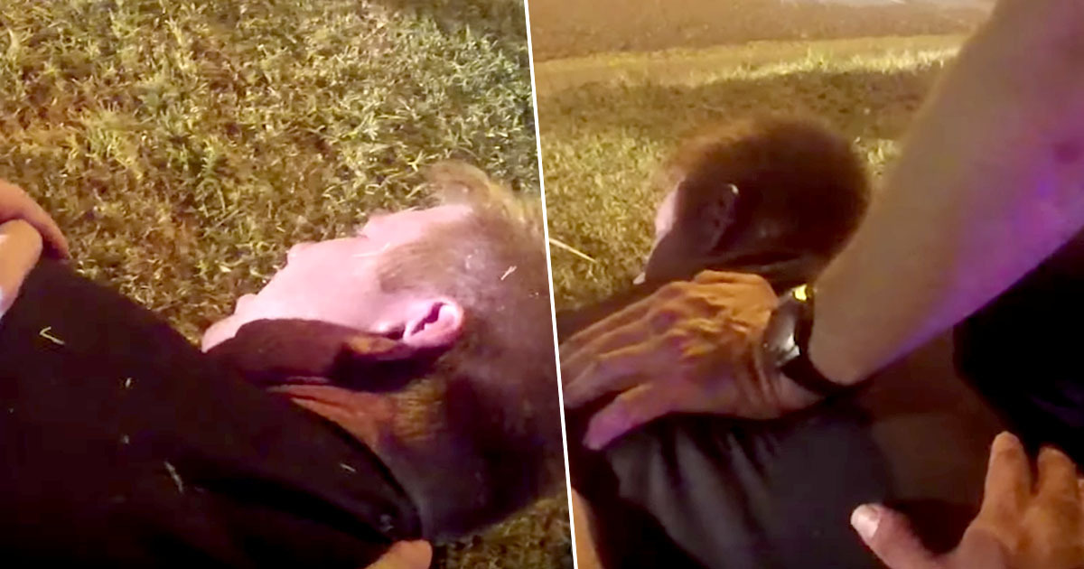 Body-cam footage shows Dallas man being restrained and mocked by police as he dies
