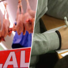 GCSE Student Disqualified For Criticising Halal Meat During Exam