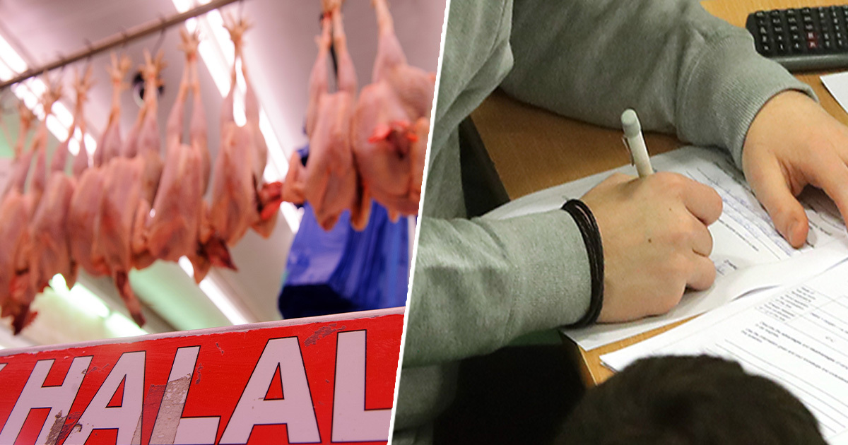 Student disqualified from exam after criticising halal meat