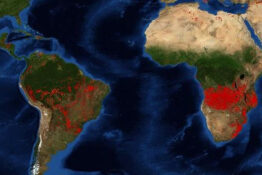 More fires in Angola and DR Congo than Amazon