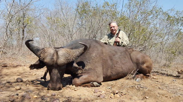 Trophy hunters pose with buffalo