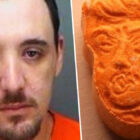 Florida Man Arrested For Possessing Ecstasy Pills In Shape Of Trump's Face