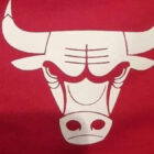 People Have Just Realised Chicago Bulls Logo Looks Like Robot Having Sex With Crab