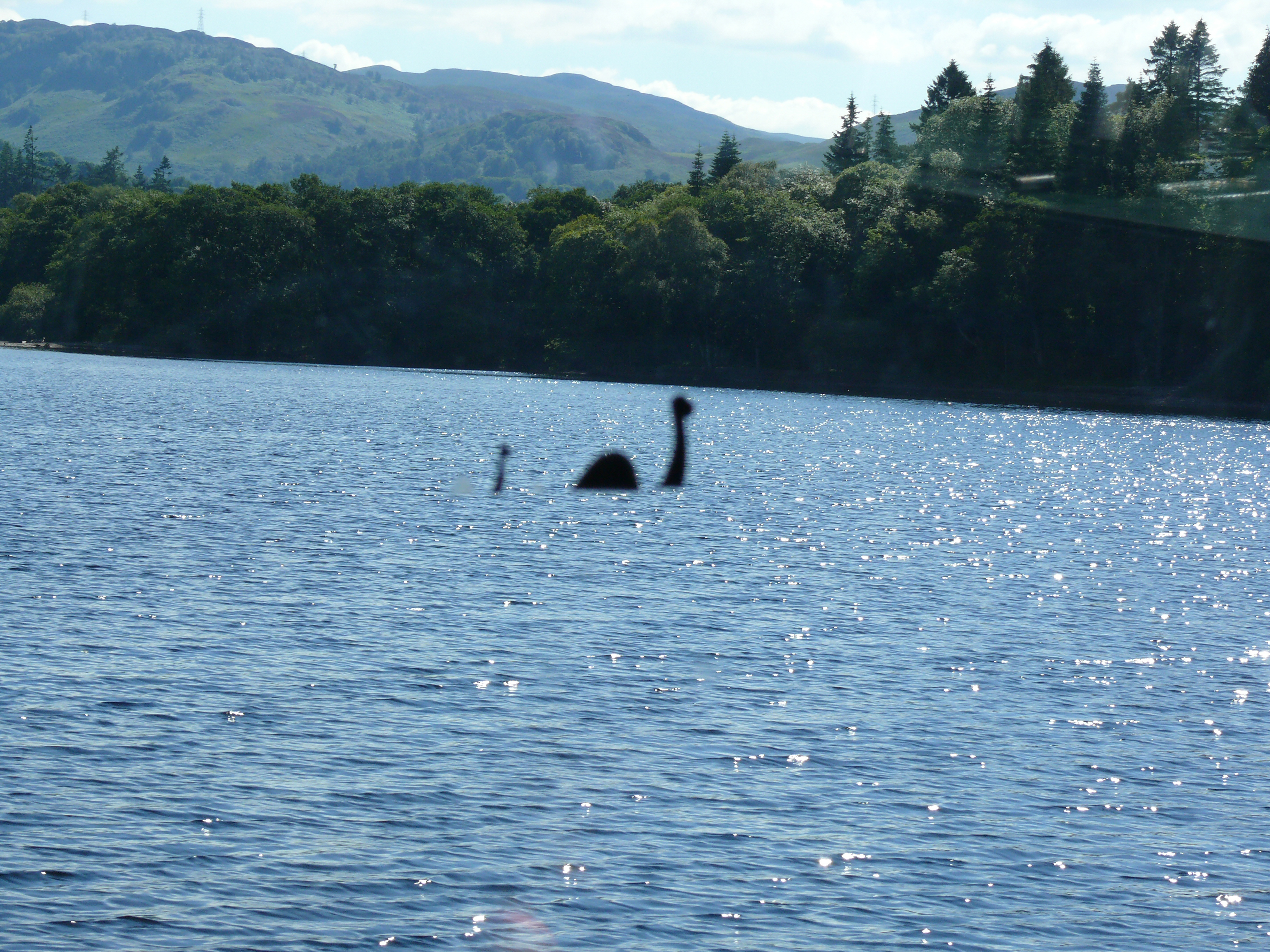 Scientists Have Finally Discovered An Explanation For Loch Ness Monster Through DNA Samples