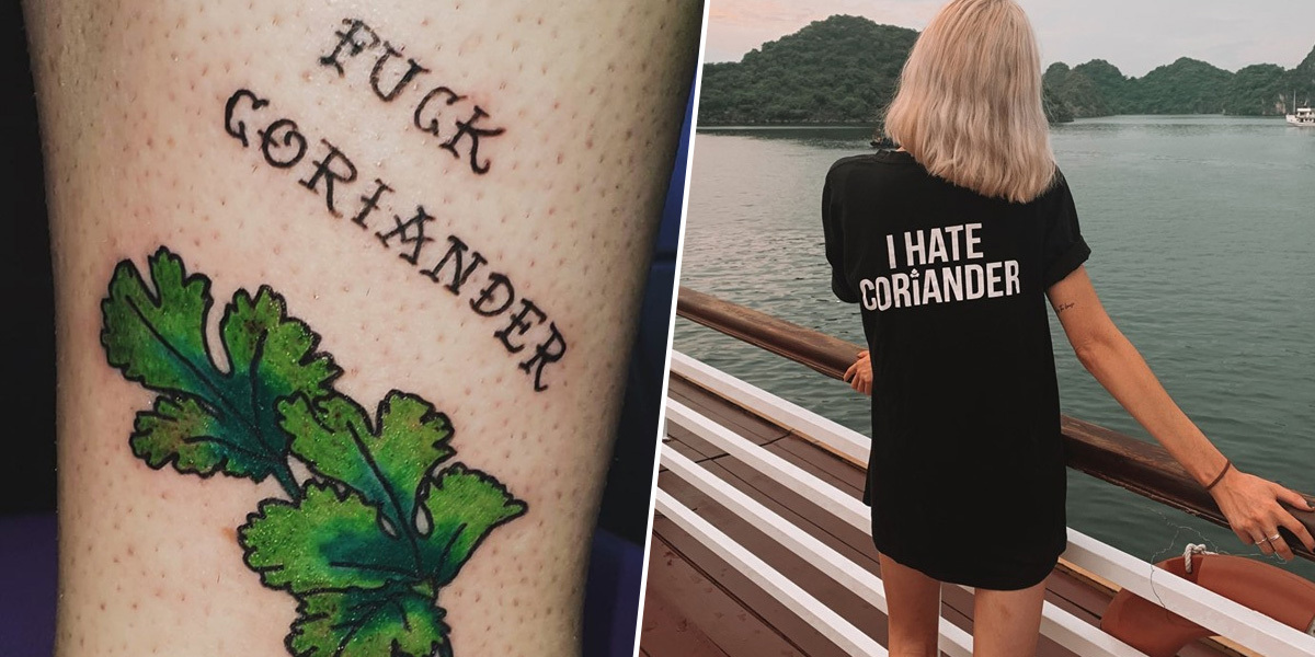 A Coriander Hate Group Has Nearly A Quarter Of A Million Followers