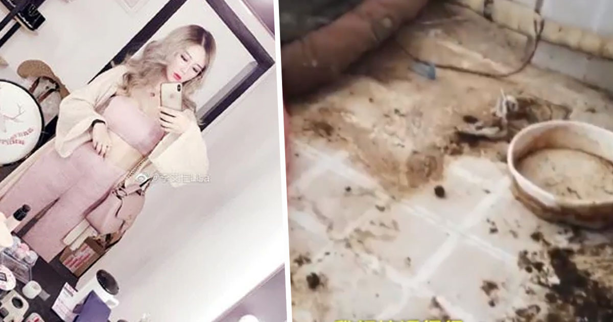 Influencer's landlord exposes her double life with disgusting flat