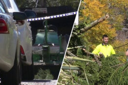Gardener Dies As He's Sucked Into Woodchipper