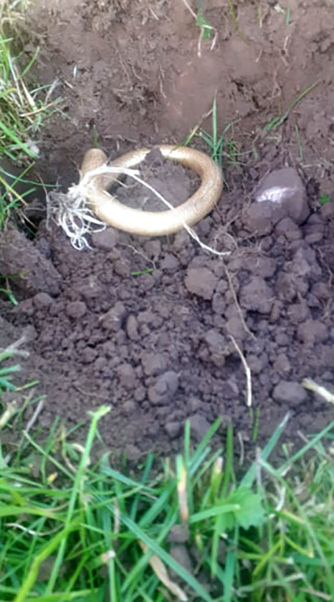 Four-Thousand-Year-Old Necklace Worth £11,000 Found By Metal Detectorist