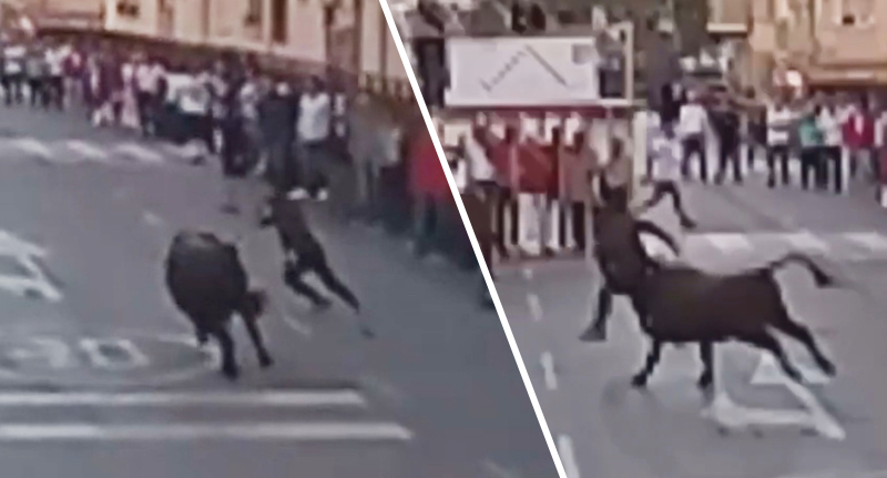 Bull Gores Man Up His Bum During Running Of The Bulls