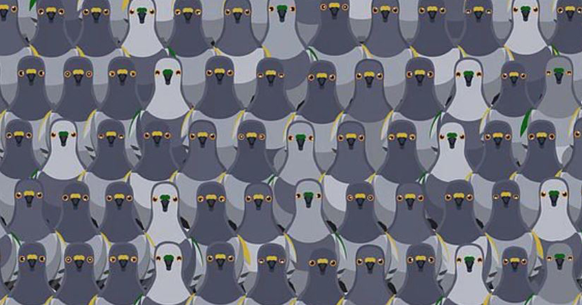 Most People Can't Spot The Cat Among The Pigeons In Less Than 18 Seconds In Brainteaser