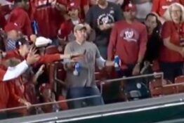 Guy takes baseball to the gut so he doesn't drop his two beers