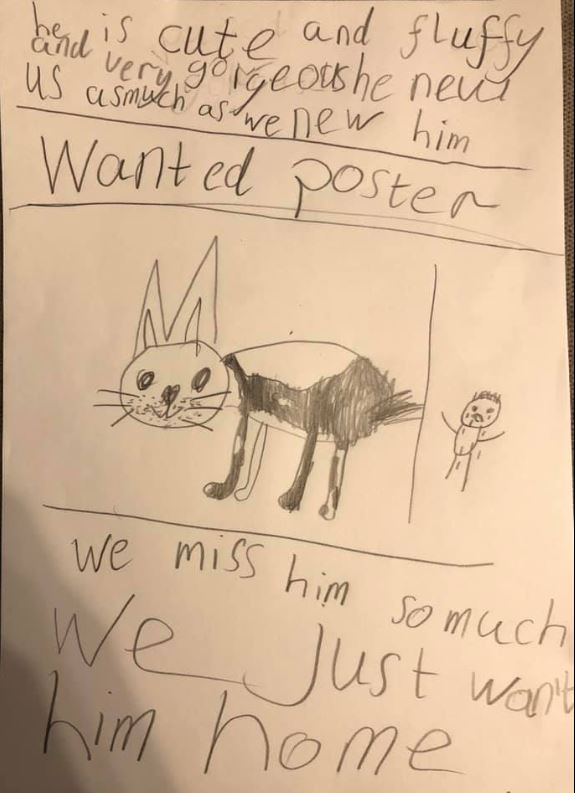 Boy draws wanted posters for lost dog