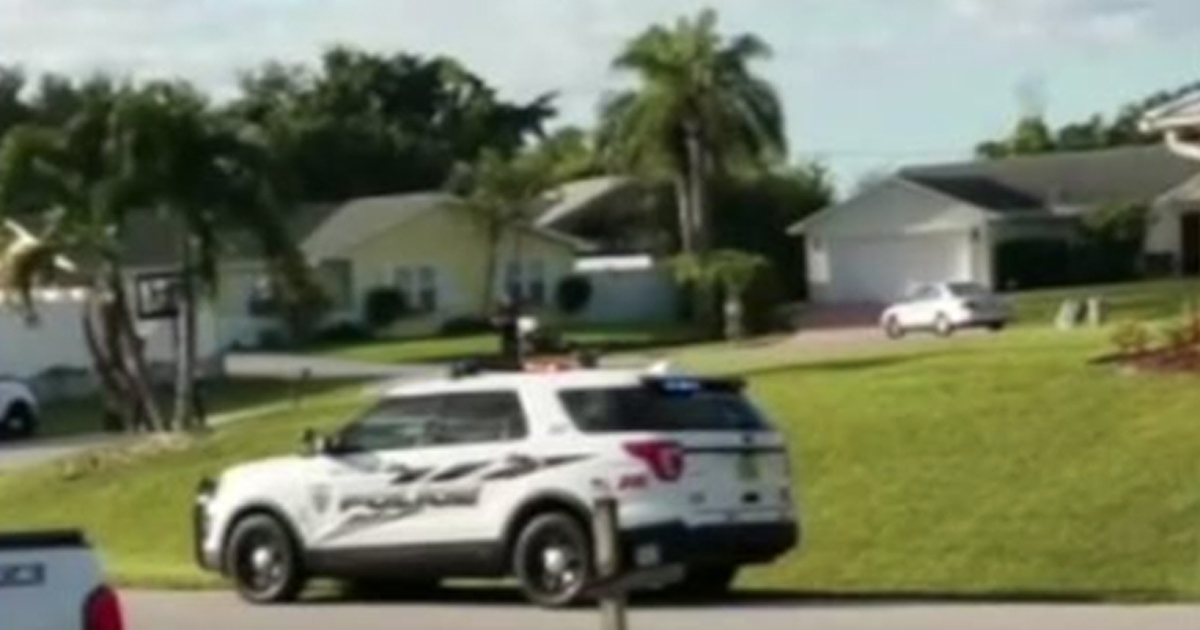 Florida Dog Puts Car Into Reverse And Drives In Circles For An Hour