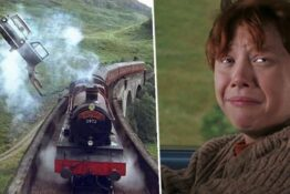 Driving Test Harry Potter Ron Weasley Thumb
