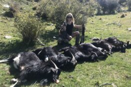 mum receives death threats hunting