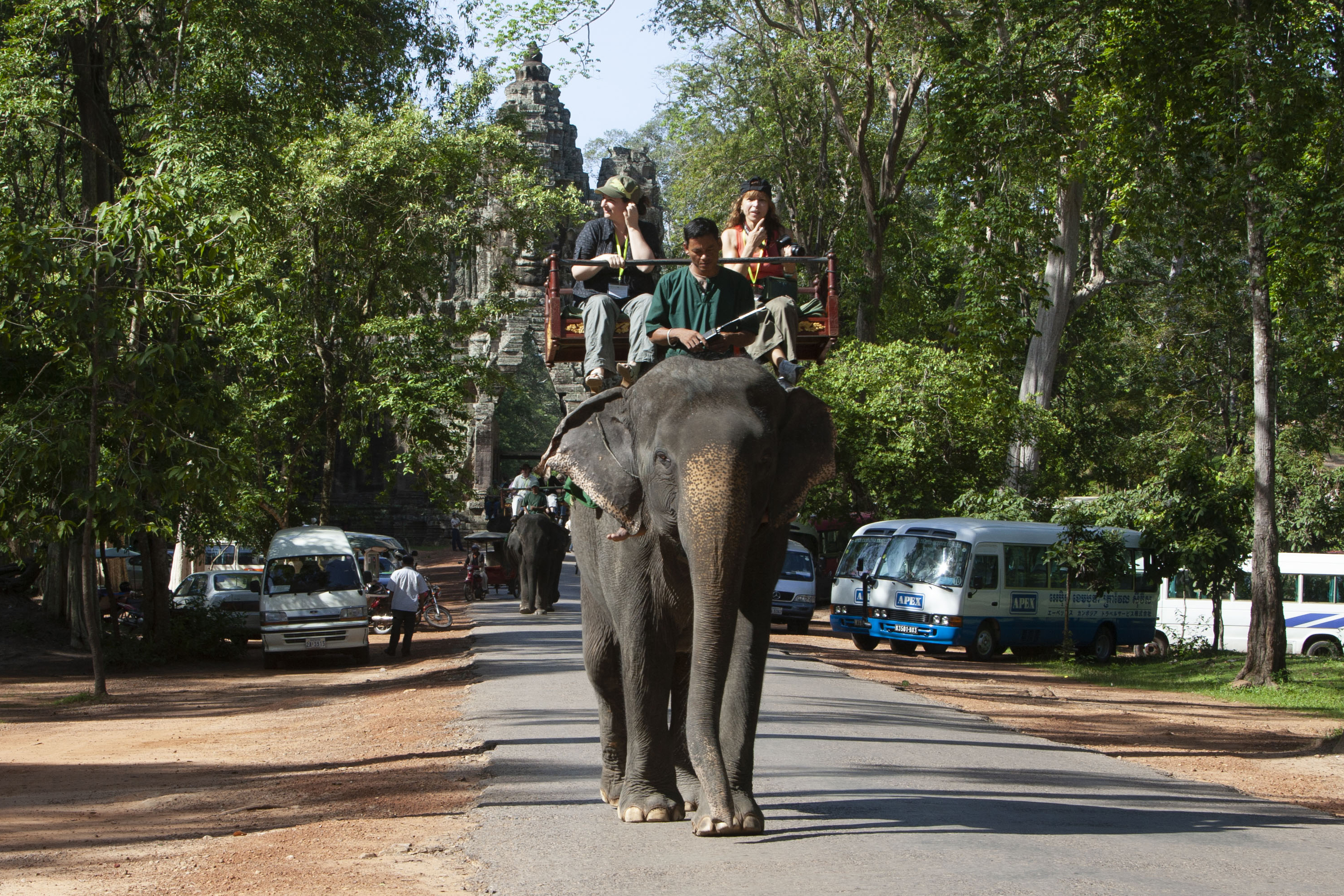 Tourists riding elephant in Cambodia's Angkor park