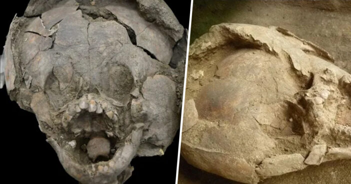 Infant Skeletons Wearing 'Helmets' Made of Other Children's Skulls Stun Archaeologists