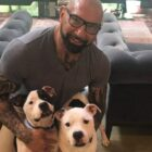 Dave Bautista Adopts Two Abused And Neglected Pit Bulls From Shelter