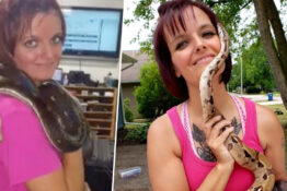 Woman Found Dead In House Surrounded By 140 Snakes