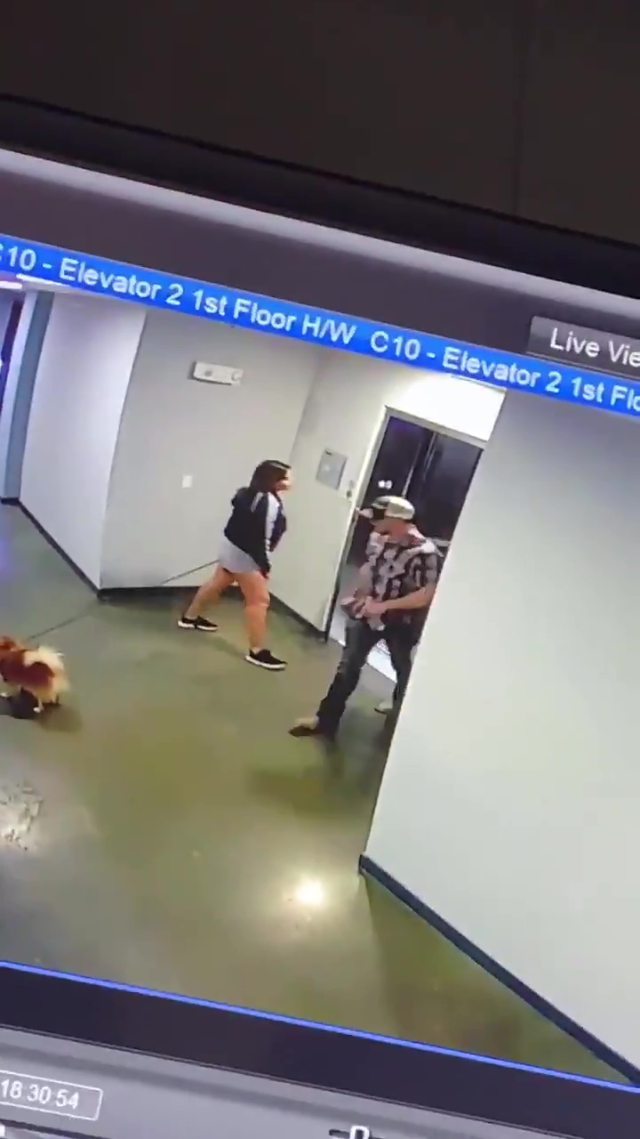 man saves dog from lift