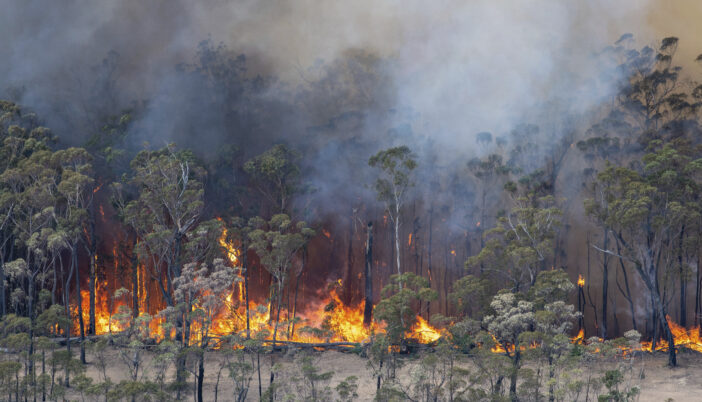 Nearly 200 People Arrested In Australia For Deliberately Lighting Bushfires