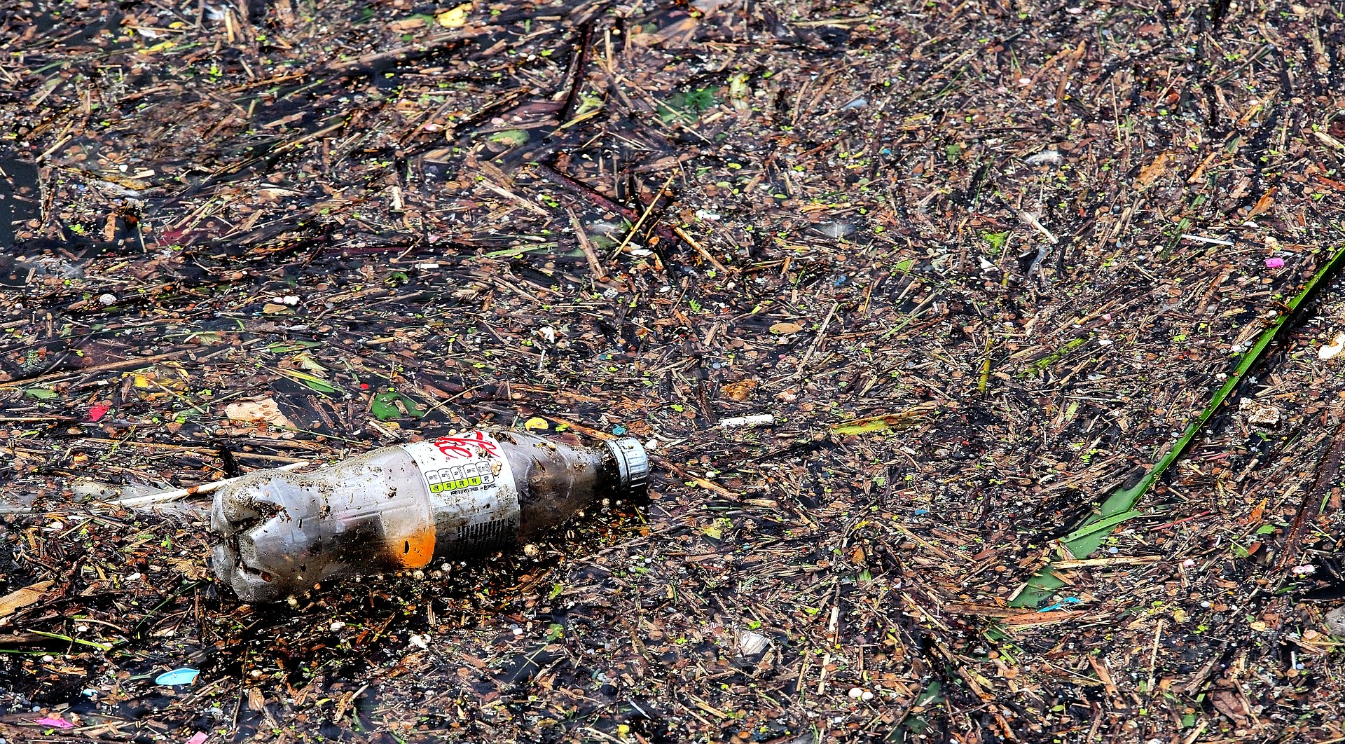 coke bottle in ocean plastic pollution