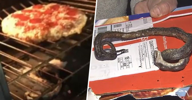 Family Cooking Frozen Pizza Shocked To Find 'Baked Snake' In Their Oven