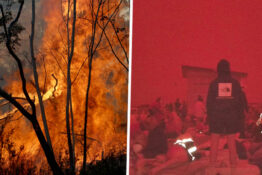 Australia's Bushfires Will Be 'Normal' In The Future, Climate Experts Warn