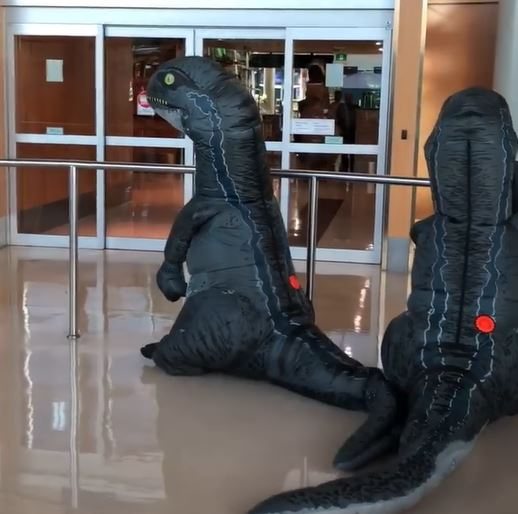 Grandkids surprise grandma by dressing up as dinosaurs at airport