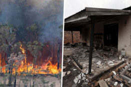 Thousands of people offer homes to Australian evacuees