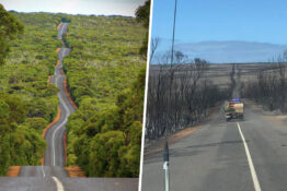 Before and after pictures show devastation of fire on Kangaroo Island