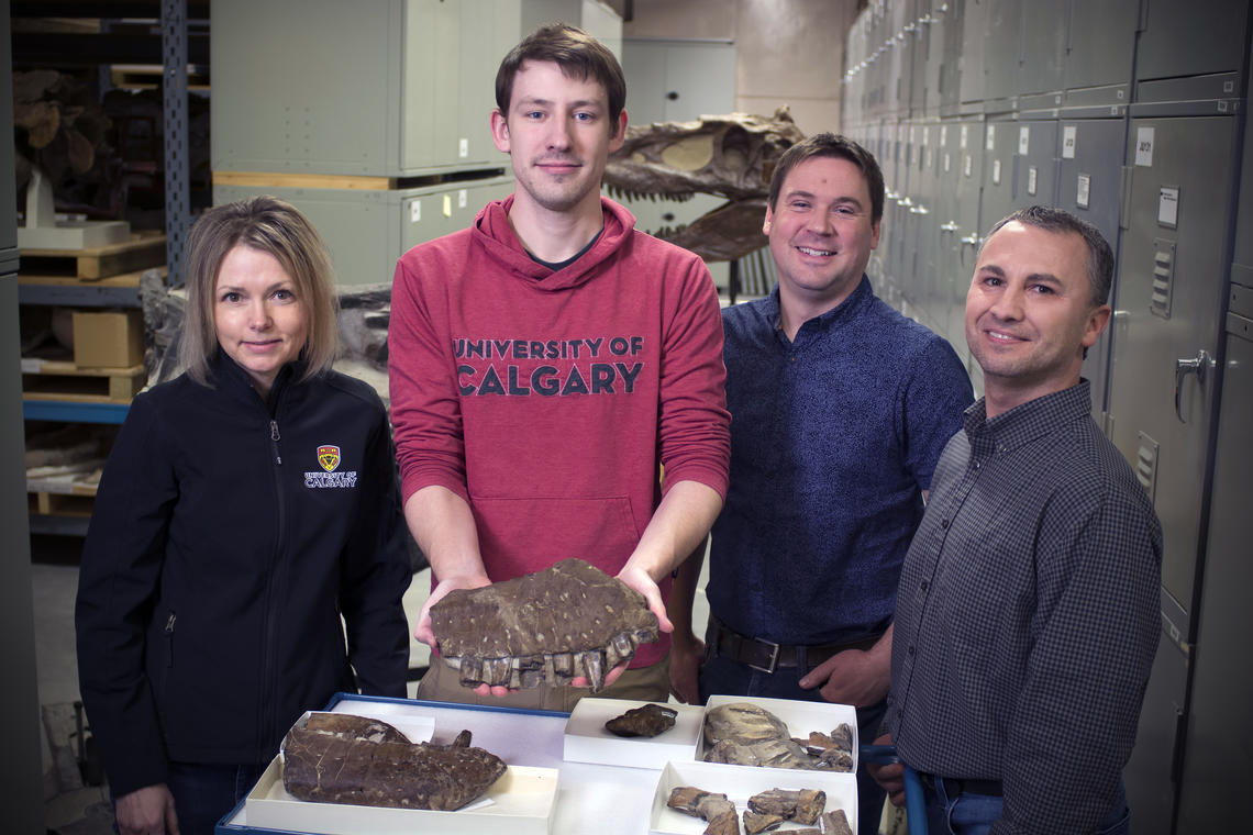 Royal Tyrrell Museum discovers new fossils