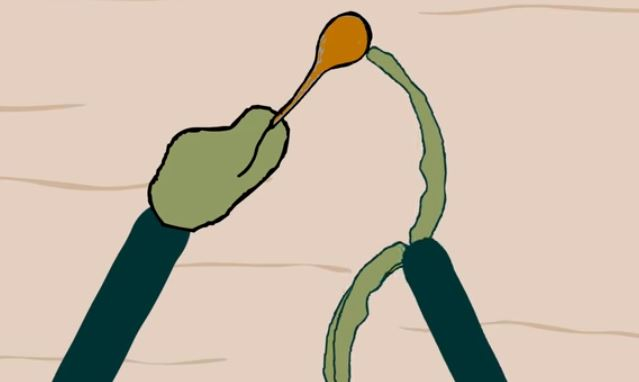 Salad Fingers loves rusty spoons