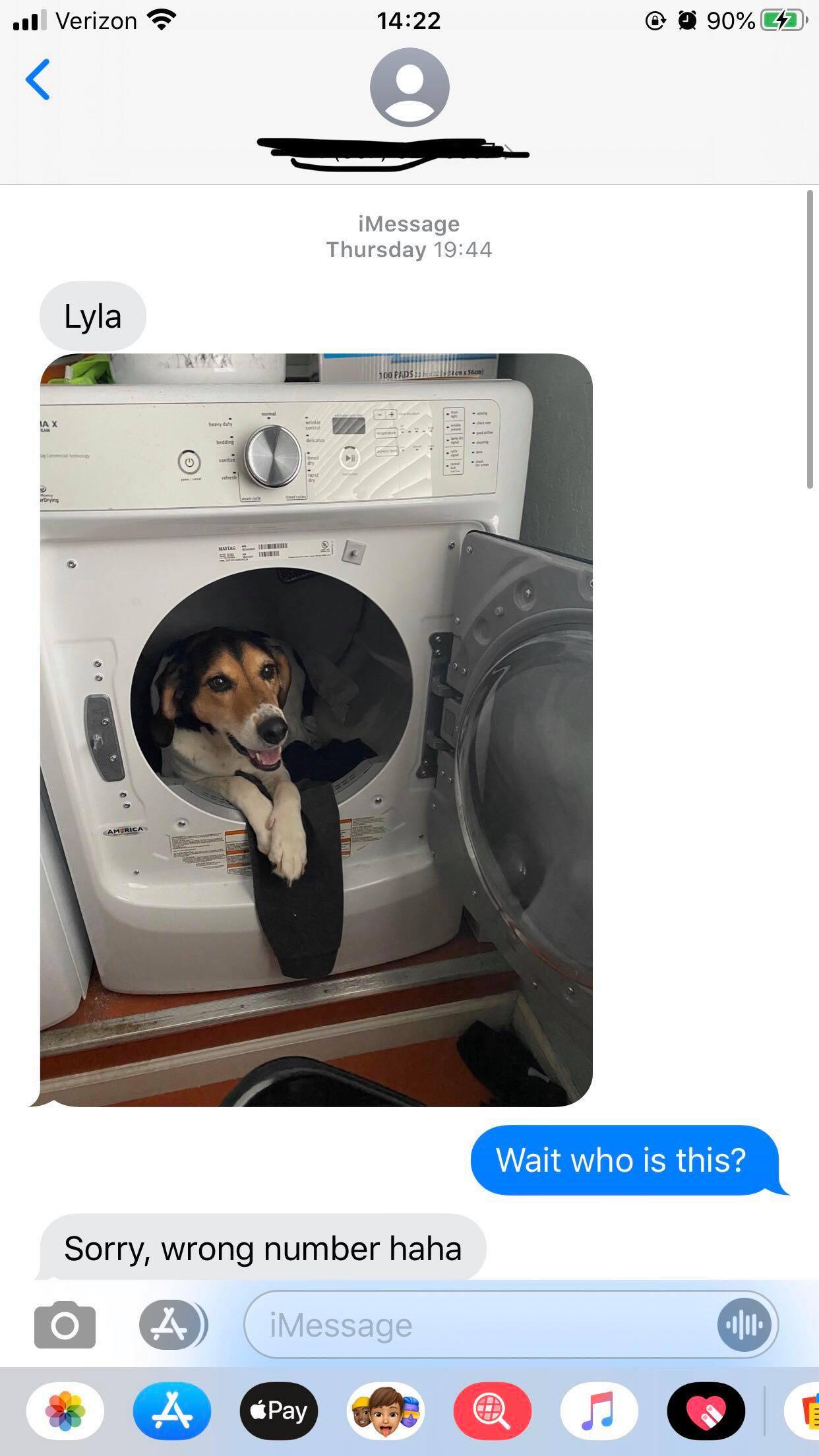 Woman receives accidental text of dog in dryer