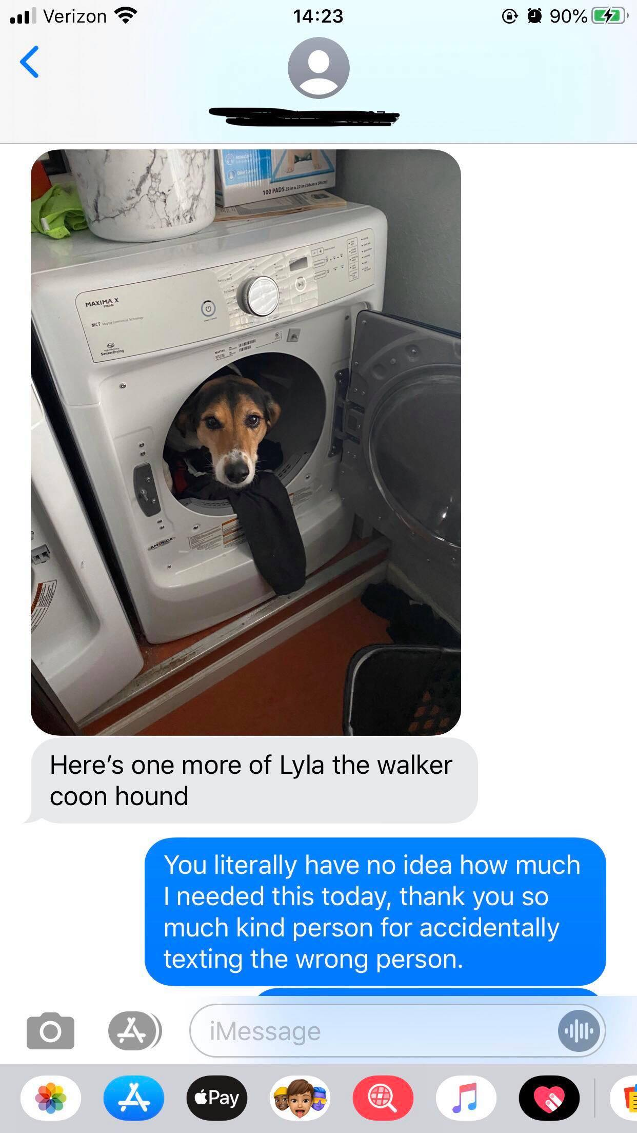 Woman sent another picture of dog in dryer to cheer her up