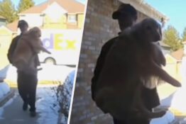 FedEx Driver Delivers Family's Lost Dog